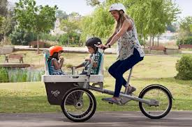 Taga 2 Bicycle with Cargo Carrier